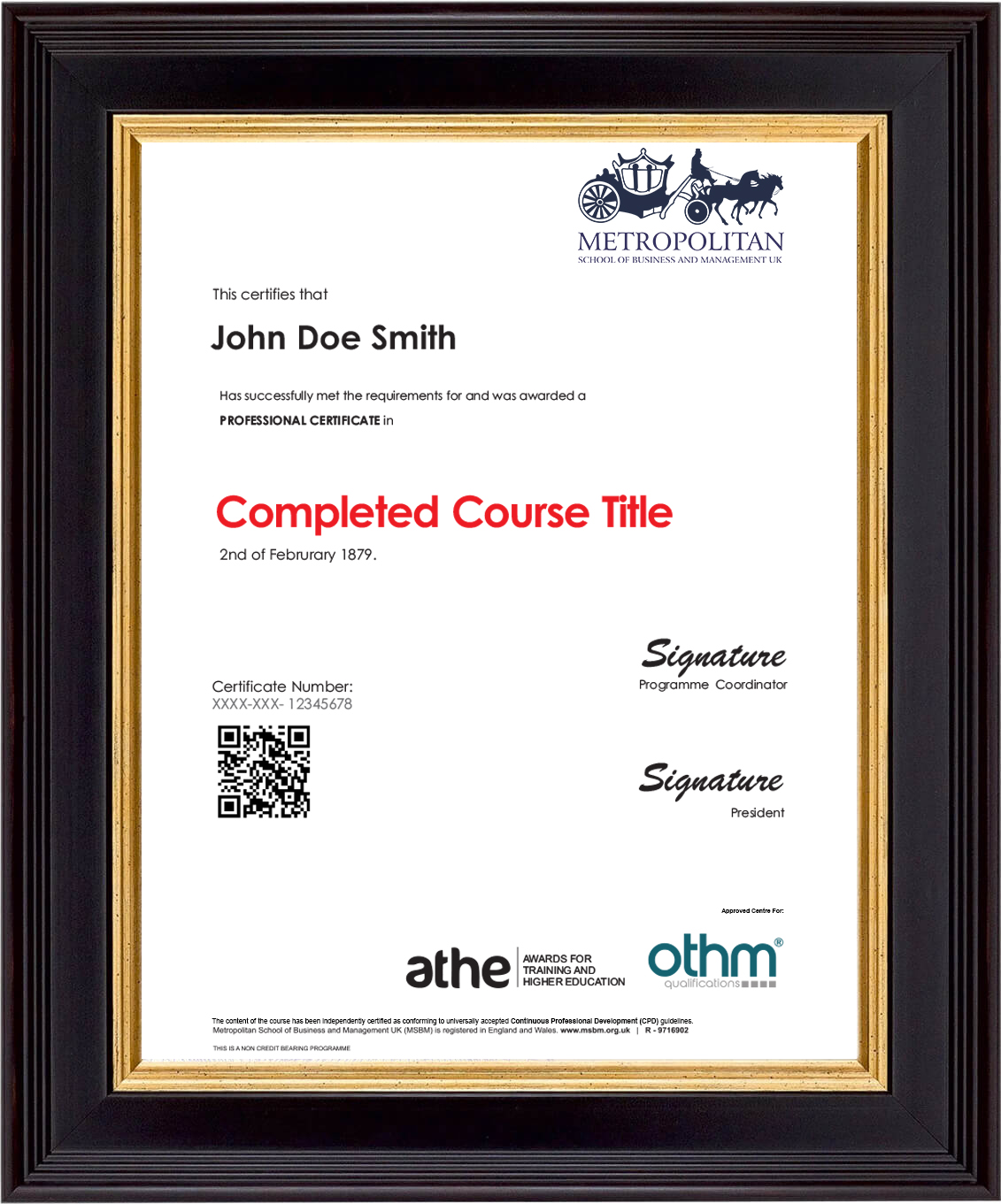 Professional Course Sample Certificate